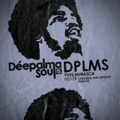 Never (Crazibiza and Muzzaik Remixes) by Yves Murasca