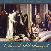 I Stand All Amazed: Peaceful Hymns of Devotion by Various Artists