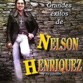 Grandes Exitos de Nelson Henriquez y Su Combo by Nelson Henriquez