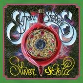 Silver & Gold by Sufjan Stevens