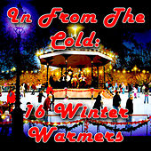 In From The Cold - 16 Winter Warmers de Various Artists
