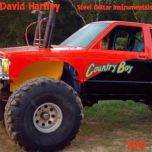 Country Boy by David Hartley