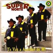 Te Vas A Acordar De Mi by Super Norte