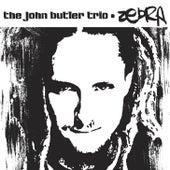 Zebra by John Butler Trio