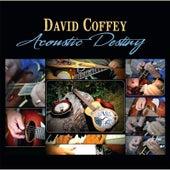 Acoustic Destiny by David Coffey