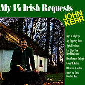 My 14 Irish Requests by John Kerr