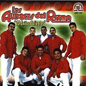 20 Exitos Calientes by Los Audaces Del Ritmo