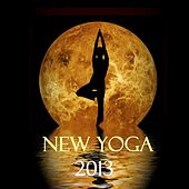 New Yoga 2013 van Various Artists