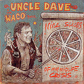 Nine Slices Of My Mid-life Crisis by Uncle Dave