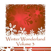 Winter Wonderland Volume 3 de Various Artists