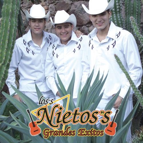 Grandes Exitos by Los Nietos/Sergio Hernandez