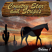 Country Star and Stripes Vol. 1 by Various Artists