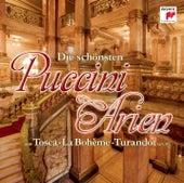 Puccini: Arien von Various Artists