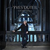 Flagrant delice de Yves Duteil