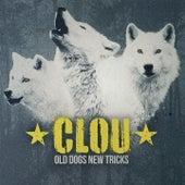 Old Dogs New Tricks de Clou