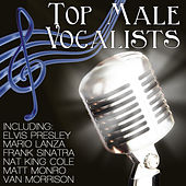 Top Male Vocalists by Various Artists