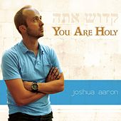 You Are Holy de Joshua Aaron