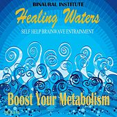 Boost Your Metabolism: Brainwave Entrainment (Healing Waters Embedded With 8hz Theta Isochronic Tones) by Binaural Institute