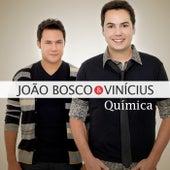 Química de João Bosco & Vinícius