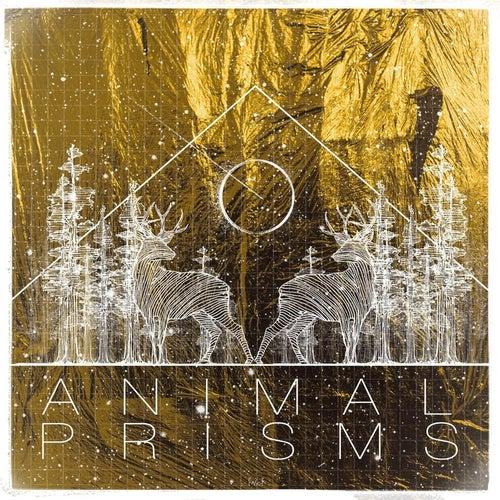 Animal Prisms by Pop Pistol
