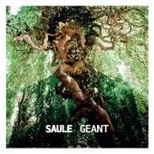 Géant von Saule