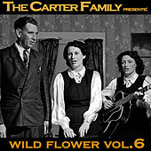 Wild Flower Vol. 6 by The Carter Family