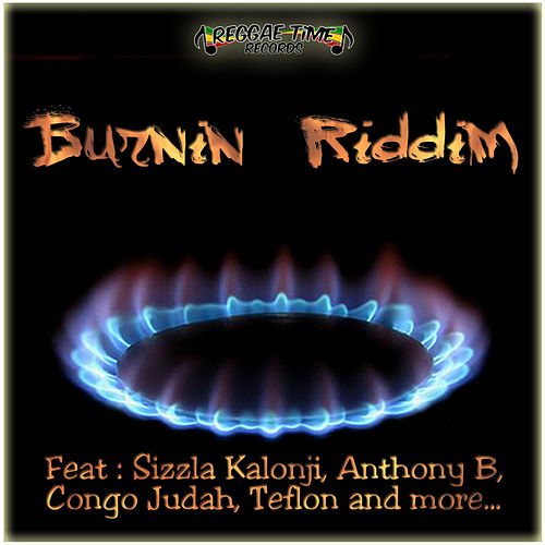 Burnin Riddim by Various Artists