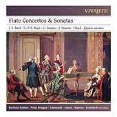 Flute Concertos & Sonatas: J. S. Bach, C. P. E. Bach, C. Stamitz, J. Stamitz, Gluck, Quantz and others by Various Artists