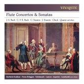 Flute Concertos & Sonatas: J. S. Bach, C. P. E. Bach, C. Stamitz, J. Stamitz, Gluck, Quantz and others von Various Artists