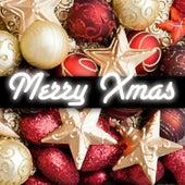 Merry Xmas de Various Artists