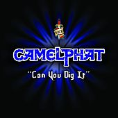 Can You Dig It von CamelPhat