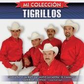 Mi Colección by Los Tigrillos
