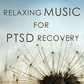 Relaxing Music for PTSD Recovery de Inc. Therapeutic Sounds