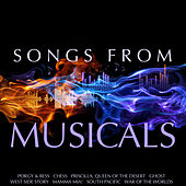 Songs from Musicals de Various Artists