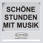 Schöne Stunden mit Musik de Various Artists