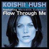 Flow Through Me (feat. Meredith Salenger) by Koishii & Hush