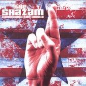 Tomorrow the World by The Shazam