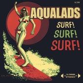 Surf! Surf! Surf! by Aqualads