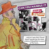 Can You Handle It de Andy (2)
