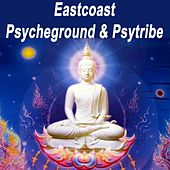 Eastcoast Psycheground & Psytribe