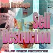 Self Destruction by Burak Harsitlioglu