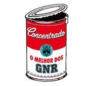 Concentrado de Gnr