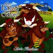 Solo Bachata by Los Toros Band