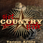 Hot Country Hits by Various Artists