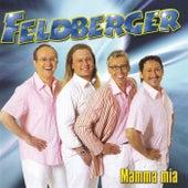 Die Feldberger by Feldberger