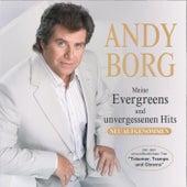 Meine Evergreens und unvergessenen Hits - CD2 by Andy Borg