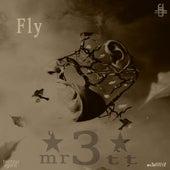 Fly by Mr3tt