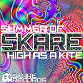 Summer Of Skare - Single by Various Artists