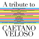 A Tribute To Caetano Veloso von Various Artists