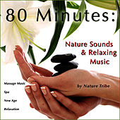 80 Minutes: Nature Sounds & Relaxing Music (Massage Music, Spa, New Age & Relaxation) by Nature Tribe